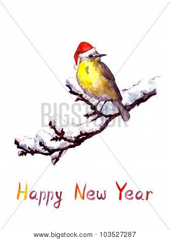 Christmas card - bird in red hat at branch with snow. Watercolor
