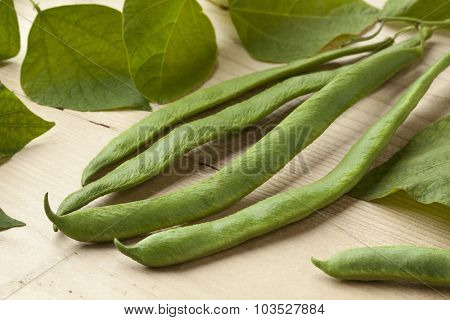 Fresh picked runner beans and leaves close up