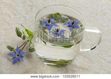 Glass cup with borage tea and flowers