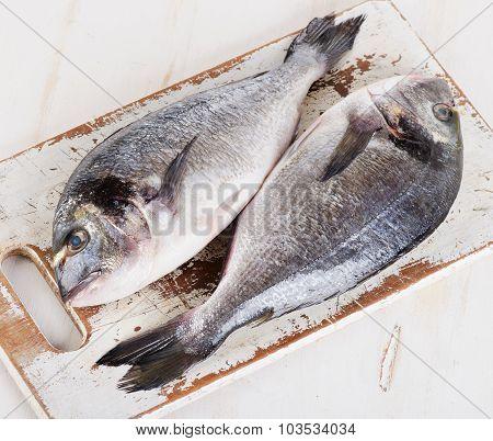 Fresh Dorado Fish On Cutting Board.