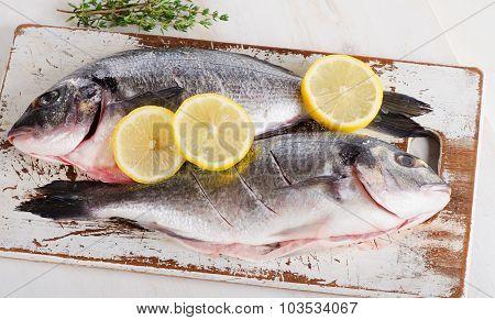 Fresh Raw Dorado Fish On A Cutting Board.