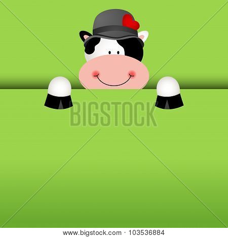 Funny cow background peeking out