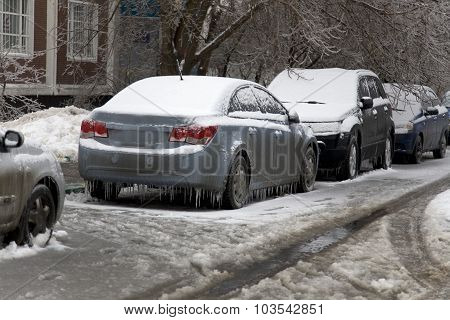 Winter Scene -frost Wrapped  Car