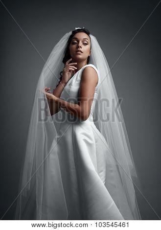 Bride's Portrait On A Grey Background