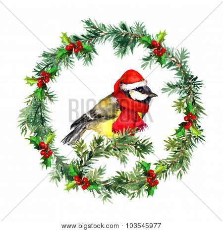Christmas wreath - fir, mistletoe and tit bird in red hat. Watercolor