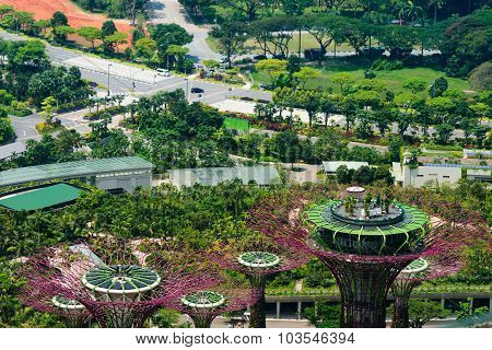 Overlooking View Of Supertrees Grove At Gardens By The Bay In Singapore