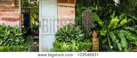 Wood Door In The Garden