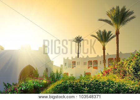 Morning on resort