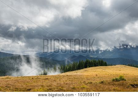 Forest And Clouds In High Mountain