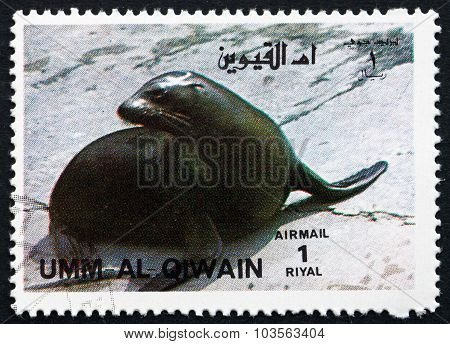 Postage Stamp Umm Al-quwain 1972 California Sea Lion
