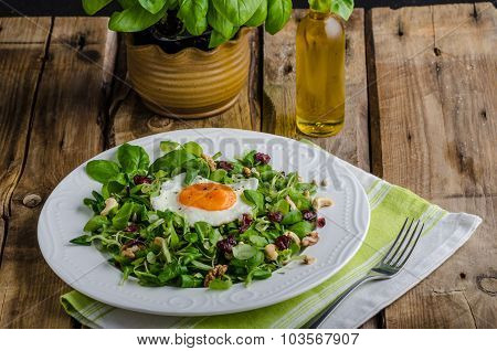 Fresh Salad With Nuts, Raisins And Fried Egg