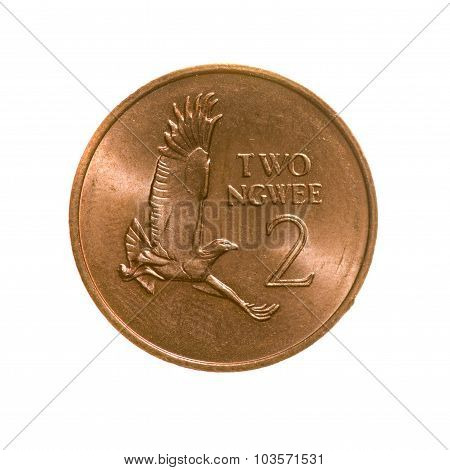 Coin Two Ngwe Zambia Isolated On A White Background. Top View.