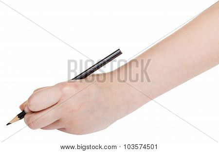 Hand Draws By Black Pencil Isolated On White