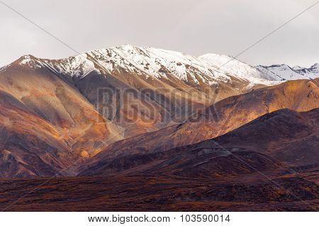 Fall Color Snow Capped Peak Alaska Range Fall Autumn Season