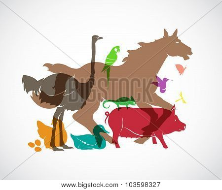 Vector Animal Group On White Background, Horse,pig,chicken,parrot,duck,butterfly, Dragonfly, Ostrich