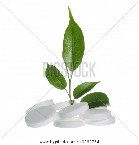 Herbal Medicine Concept on White