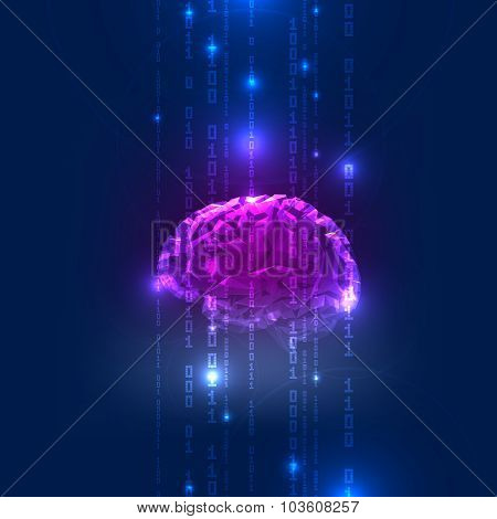 Abstract Activity of Human Brain with Binary Code Stream