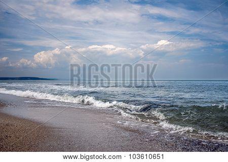 live Sea
