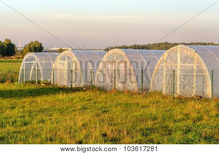 A group of greenhouses.
