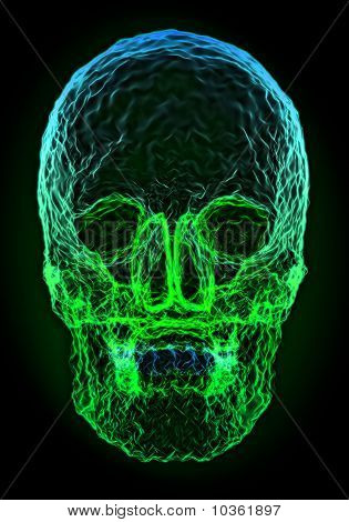 Abstract Colorful Skull Shape