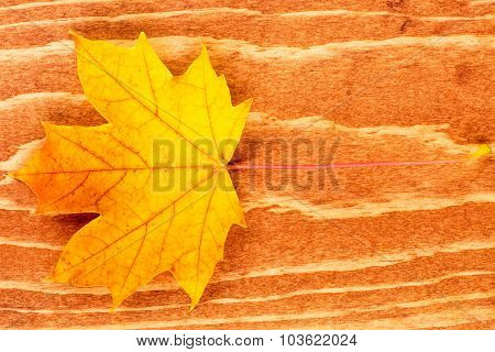 Fall Leaf On Brown Wood Background