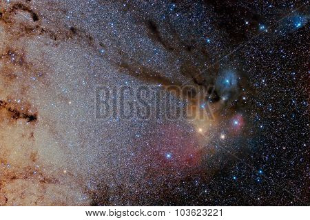 Star Field And Nebulae In Sagittarius And Rho Ophiuchus