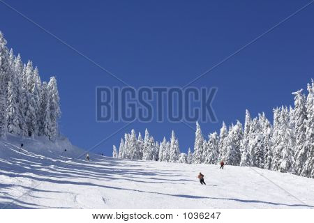 Ski Slope On Mountain Side