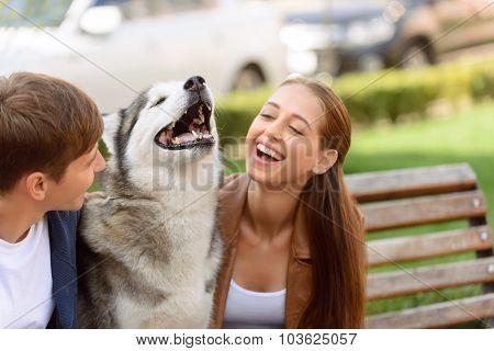 Nice girl playing with dog