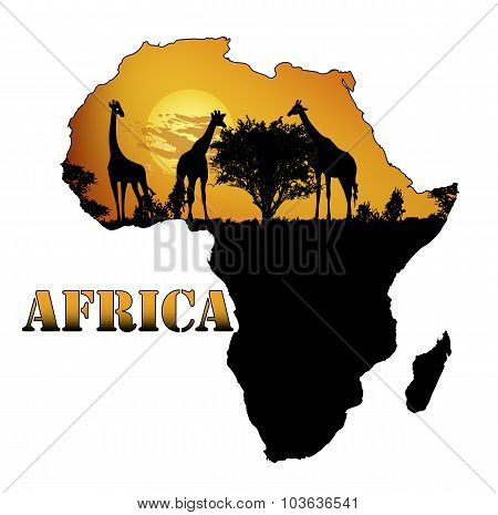 Fauna Of Africa On The Map