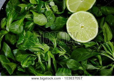 Watercress Salad With Lime Close Up