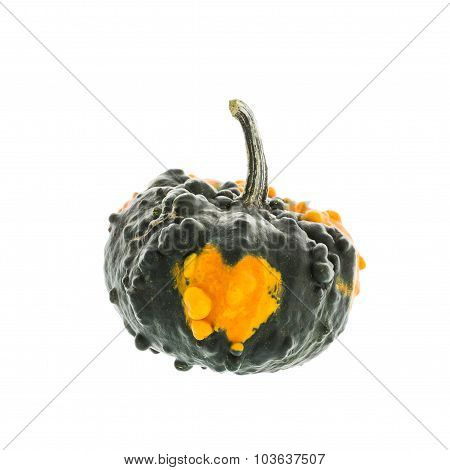 Mini Pumpkin Isolated Over White