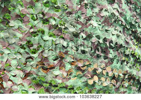 Camouflage Camp Scene