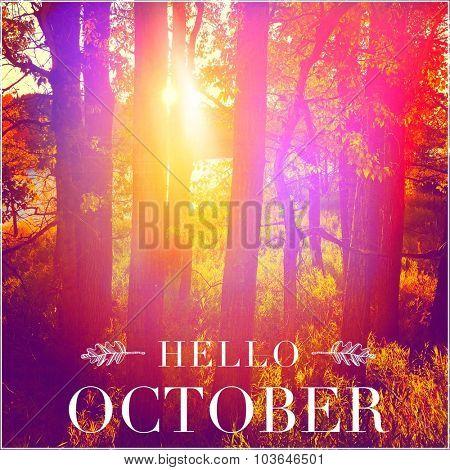 Inspirational Typographic Quote - Hello October