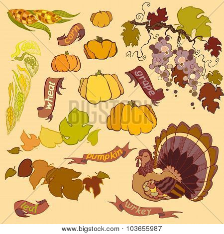 Thanksgiving elements set isolated on light background