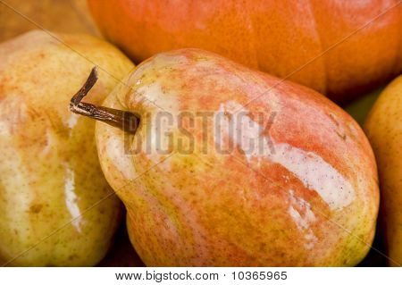 Pears Over Pumpkin Beackground