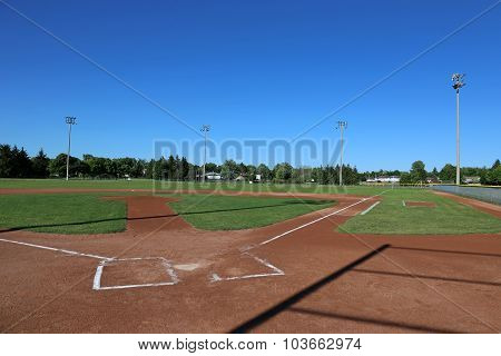 Baseball Shadows