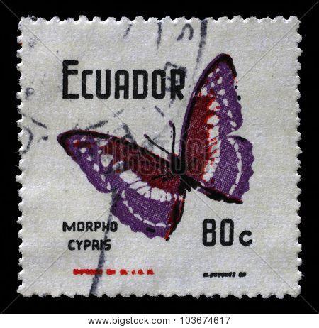 ECUADOR - CIRCA 1970: a stamp printed in Ecuador shows Butterflies Morpho cypris, circa 1970.