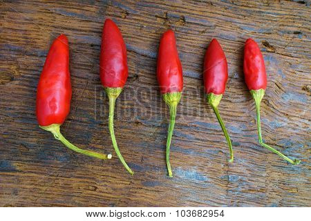 Five Red Chili Pepper Pods