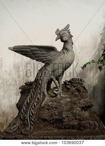 Rock pheasant