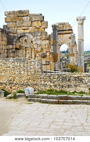 Volubilis In Morocco Africa Roman Deteriorated Monument And