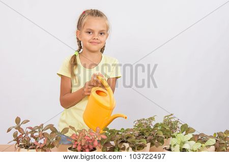 Six-year Girl Watering Potted Plants