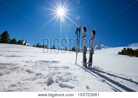 Pair of cross skis in snow, skiing, winter season