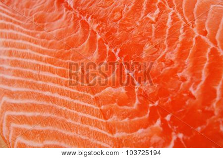 fresh uncooked red fish fillet on wood over white