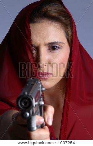 Domestic Violence Gun