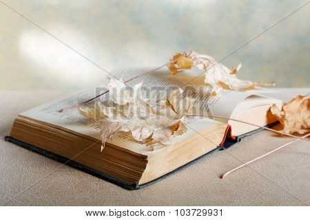 Old Book With Yellow Leaves Closeup