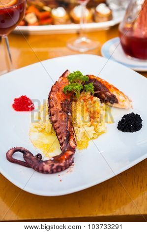 Grilled Octopus Tentacle