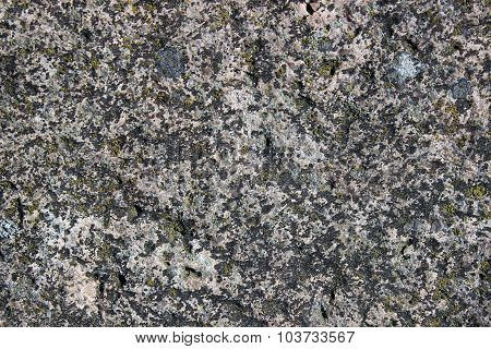 The Surface Of An Old Rock