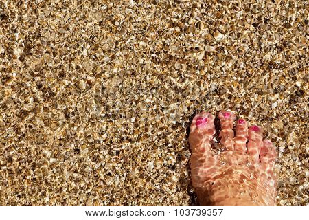 Wet Female Feet By Water On Sand