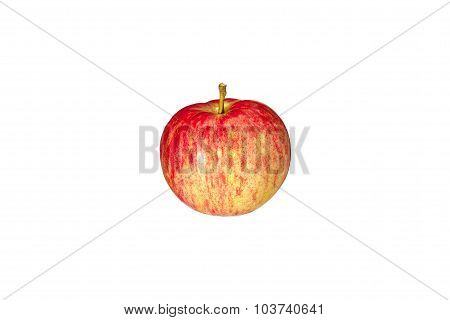 Red striped apple close up on a white background.