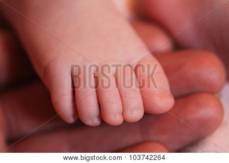 The leg of the infant in parent's hands